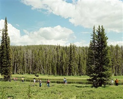 yellowstone national park, august 1979 by joel sternfeld