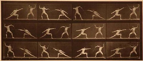 "plate 349 from ""animal locomotion"" by eadweard muybridge"