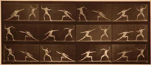 "plate 349 from ""animal locomotion"" by eadweard muybridge"
