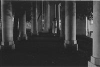 La Sonnambula #2, 2004