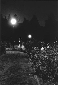 La Sonnambula #5, 2004