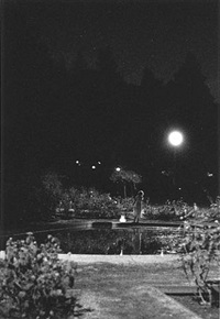La Sonnambula #6-B, 2004