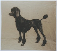 untitled (poodle 2) by nicola hicks