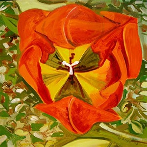 red tulip, head-on by lois dodd
