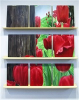 vermillion broken tulips #1 by barbara broughel