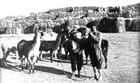 untitled (dos campesinos con llamas) (100545) by martín chambi