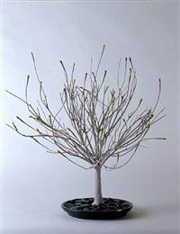 <!--49-->hc azalea by rona pondick