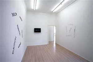 exhibition view (detail) of 'wallpiece with mirrorwords', 'wallpiece with red mirrorwords', video 'some times' by robert barry
