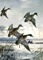 <b>john whorf</b><br>mallards at twilight (sold)