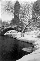 central park after a snowstorm, new york by alfred eisenstaedt