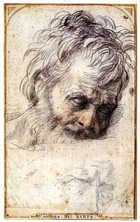 the head of saint joseph, looking down, with a subsidiary study below (recto). two studies of legs (verso) by andrea del sarto