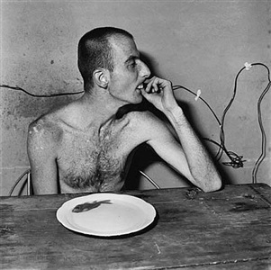 lunchtime by roger ballen