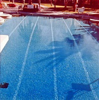 "from ""nine swimming pools"" by ed ruscha"