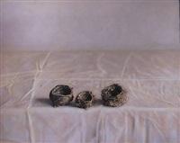 three nests by kate breakey