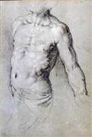 study of a male torso by paris bordone