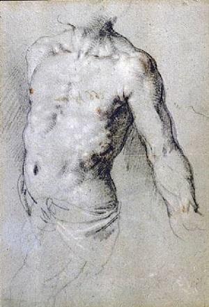 study of a male torso by paris bordone