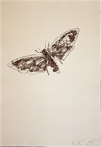 butterfly by kiki smith
