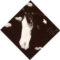 two horses, i by joe andoe