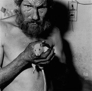 ratman by roger ballen