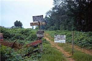 signs in landscape, near marion, alabama, 1975 by william christenberry