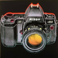 japan project, homage to andy warhol, nikon-af / n8008 by rupert jasen smith
