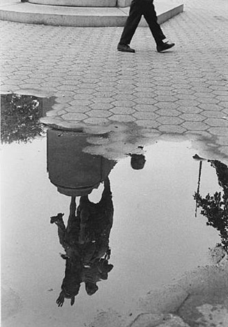 washington square park after the rain by andré kertész