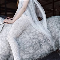 dapple grey horse with lace by laura wilson