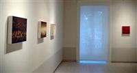 installation view by elena del rivero