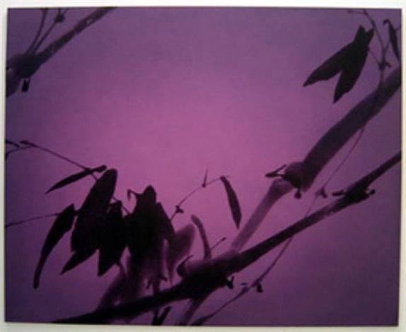 bamboo by zhou tiehai