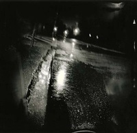 rain slought (peripheral plate series) by christopher myers