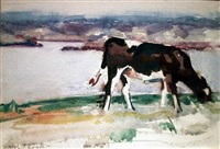 cow grazing, iona by francis campbell boileau cadell