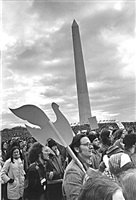 anti-war, anti-nixon rally, washington, d.c. by leroy henderson