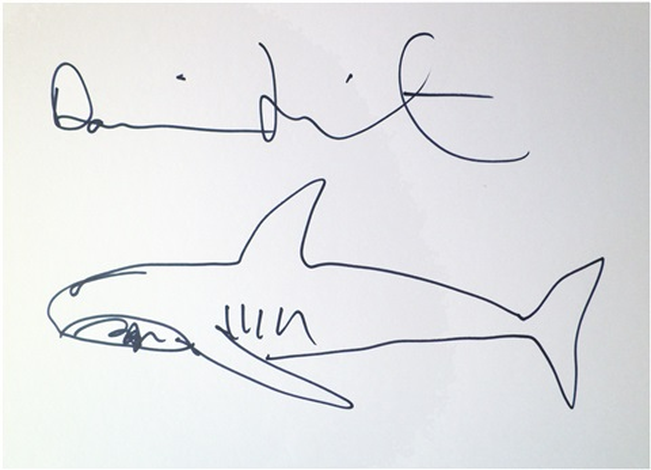 Untitled Shark Sketch By Damien Hirst On Artnet
