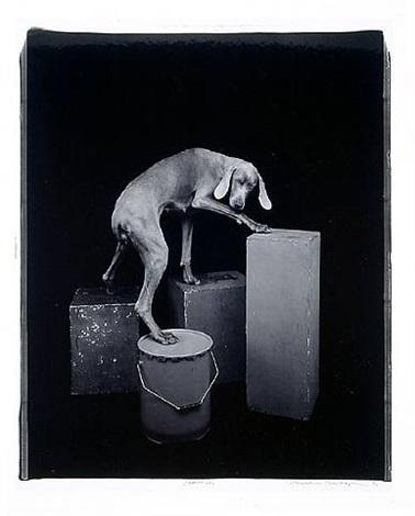 pedestals by william wegman