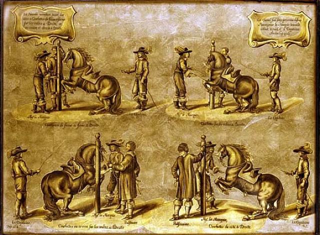 méthode et invention nouvelle de dresser les chevaux, plate 23, page 132 by abraham van diepenbeeck