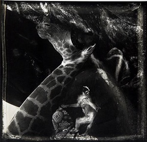 journeys of the mask: a prince in hell, new mexico by joel-peter witkin