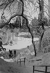 scene with stairs, central park, new york by alfred eisenstaedt