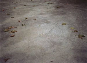 concrete pavement by mike marshall