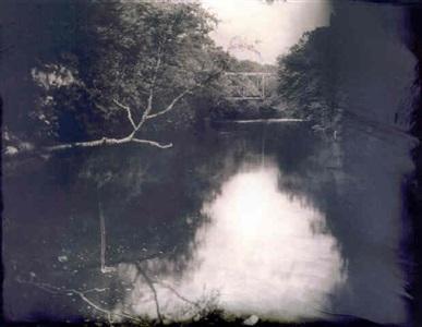 untitled (deep south #23) by sally mann