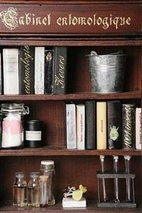 cabinet entomologique i (détail) by jan fabre