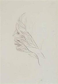 foglie by giuseppe penone