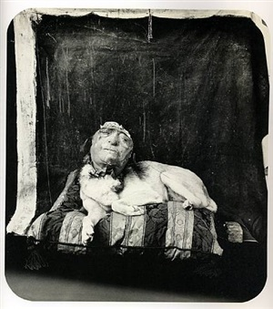 dog on a pillow by joel-peter witkin
