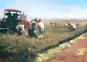 fieldworkers and lettuce machine by warren chang