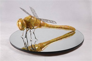 dragonfly by feng shu