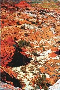 canyon and shadow by john hogan