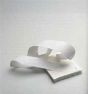 untitled (edition for parkett 56) by jorge pardo