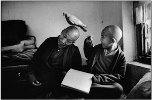 tulku khentrol lodro rabsel with his tutor llagyel shechen in the bonath monastery, nepal by martine franck