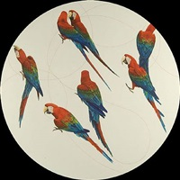 untitled (green-winged macaws) by james prosek