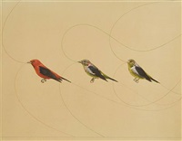 untitled (scarlet tanagers) by james prosek