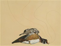 untitled (wood duck) by james prosek